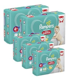 Giga pack 246 Couches Pampers Baby Dry Pants taille 4+ sur Choupinet